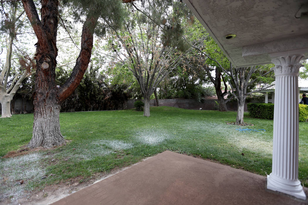 The backyard of the former house of Jerry Lewis in Las Vegas, Wednesday, May 15, 2019. Jane Pop ...