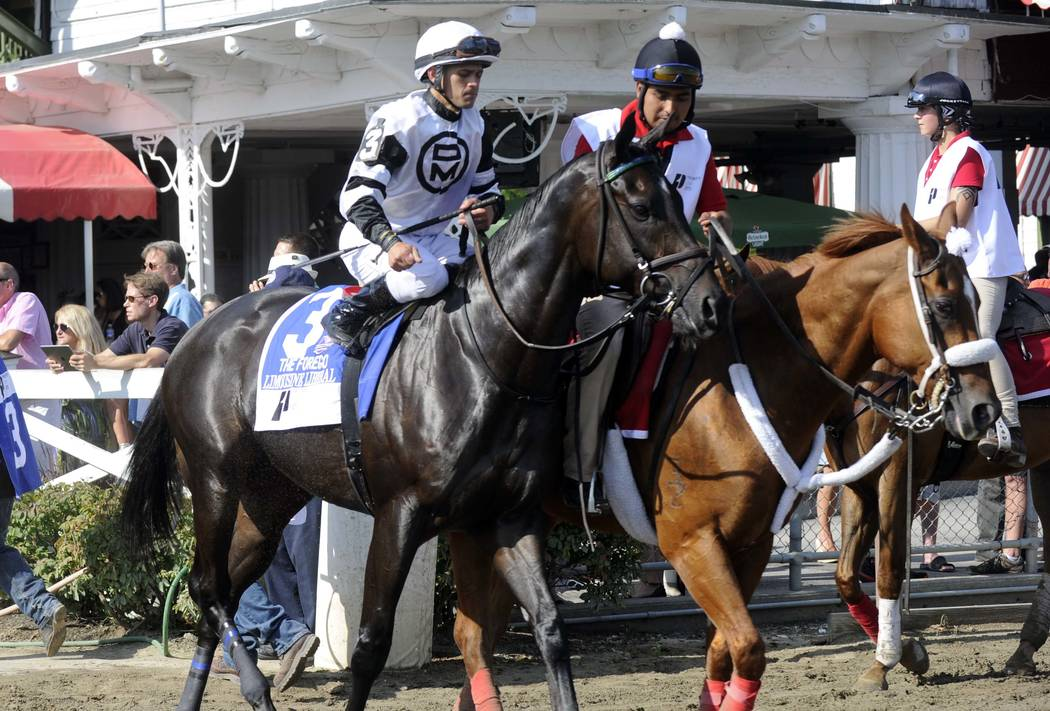 Limousine Liberal with Javier Castellano aboard during the post parade before The Priority One ...
