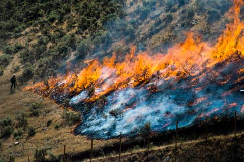 In a July 30, 2018, file photo, firefighters control the Tollgate Canyon fire as it burns near ...
