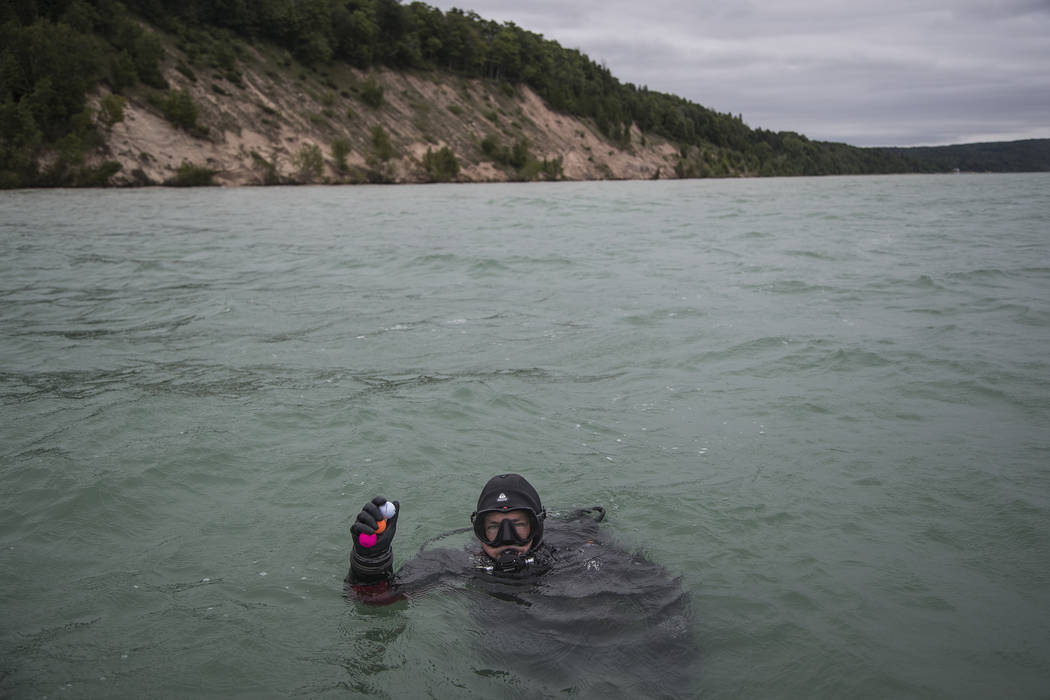 In a Thursday, July 11, 2019 photo, diver Chris Roxburgh of Traverse City picks up some golf ba ...