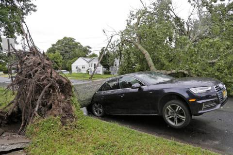 A car is crushed under a large tree in Neptune City, N.J., Tuesday, July 23, 2019. Crews are wo ...