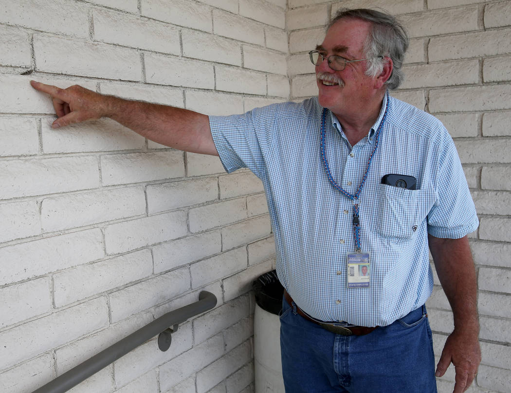 Nevada state entomologist Jeff Knight shows a Pallid-winged Grasshopper at his Las Vegas office ...