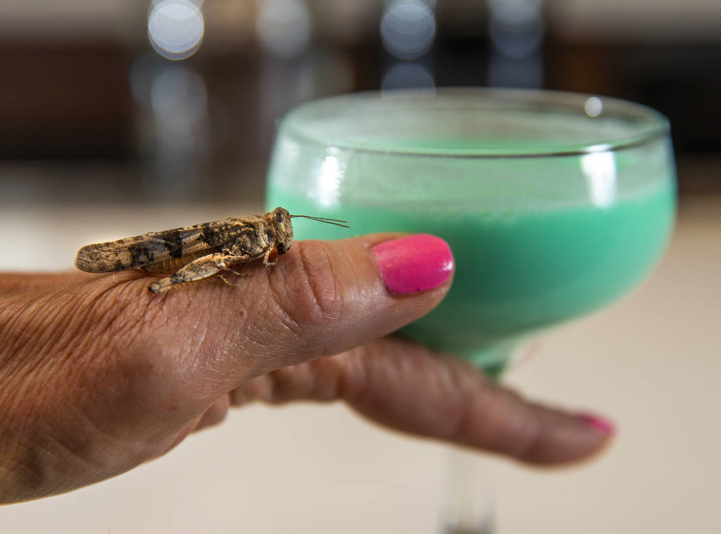 Grasshopper drink with grasshopper hanging out nearby by bartender Sarah Contois at the Smashed ...