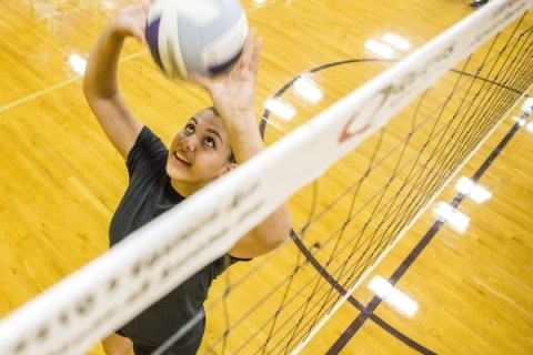 Junior outside hitter Sydney Berenyi during practice on Monday, Aug. 24, 2015. Jeff Scheid/L ...