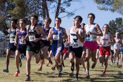 Participates of the boys 4A NIAA State Championship meet at Craig Ranch Park on Saturday, No ...