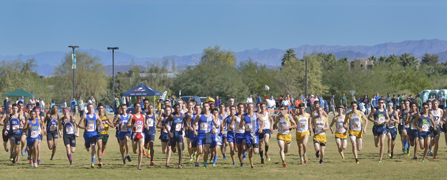 Runners begin the Division I boys state cross country meet at Sunset Park on Saturday. (Bill ...