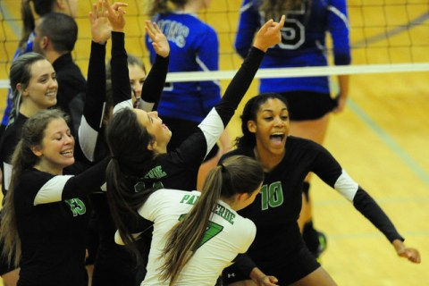 Palo Verde players celebrate their come-from-behind win against Sierra Vista during prep vol ...