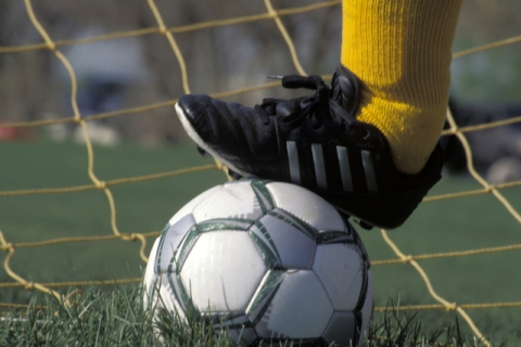 GIRLS SOCCER: Virgin Valley edges Cheyenne