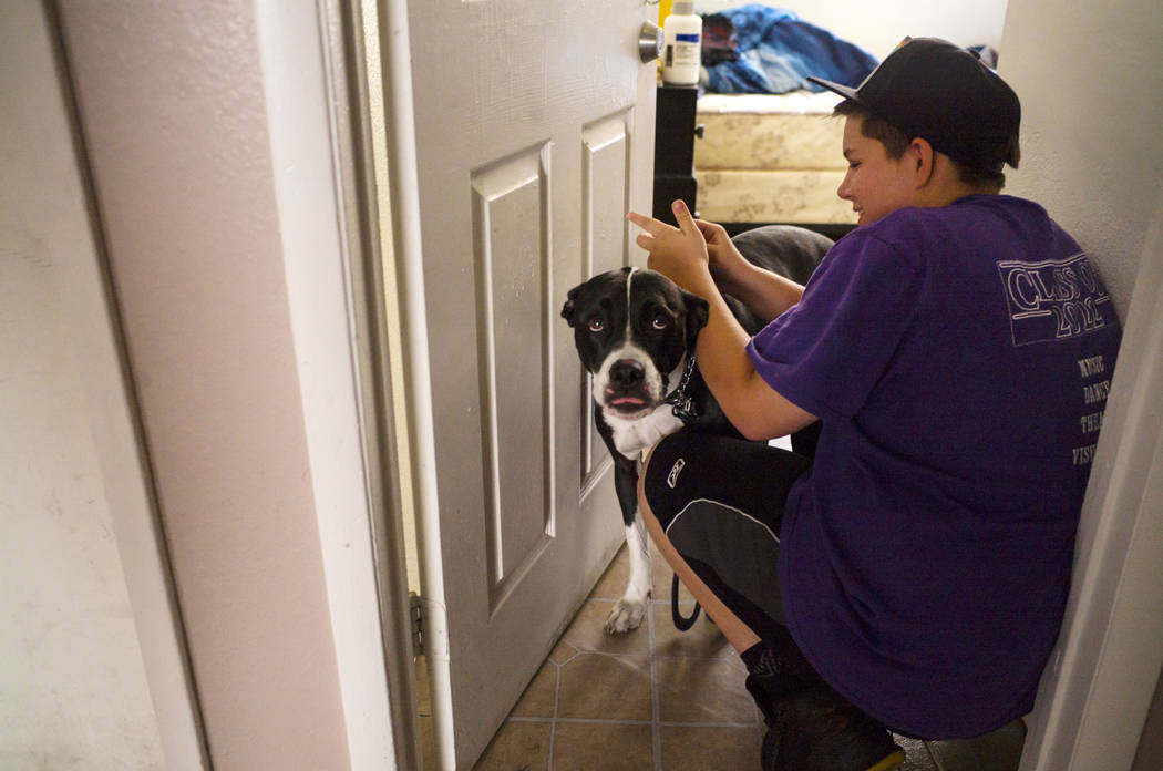 Fifteen-year-old Ryan Lauer checks on his dog, Cookie, at home near downtown Las Vegas on Thurs ...