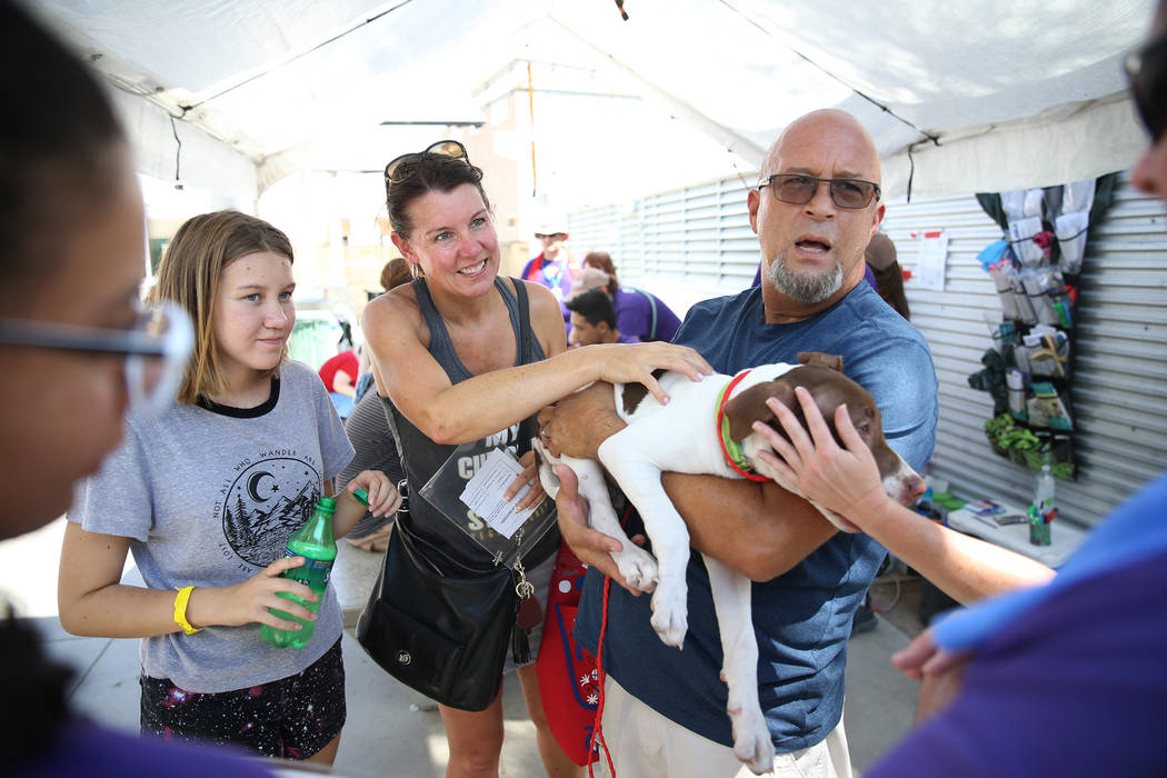 Jeff Oakie, right, with his daughter Dada, 12, far left, and wife Nicola, center, holds a dog h ...