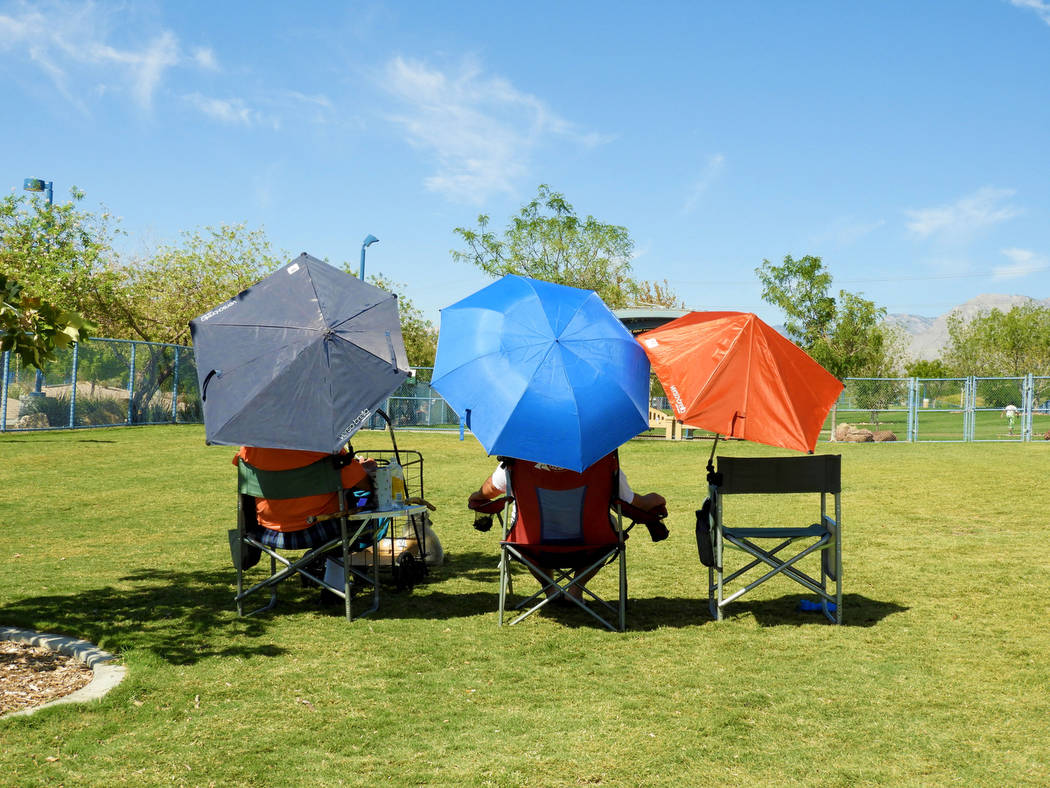 These owners gather their canine pals at Kellogg-Zaher Sports Complex Dog Park on Monday, Aug. ...
