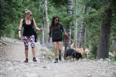 Las Vegas residents Laura Mitchell, left, with her friend Mehka Klimer, and her friend's dogs R ...