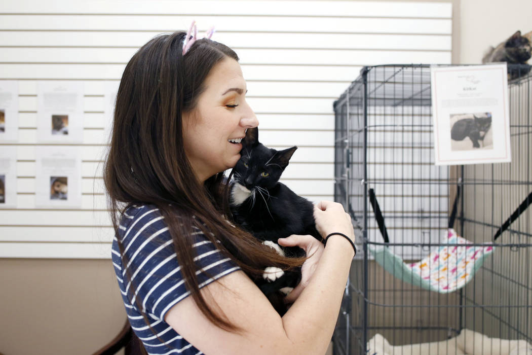 Volunteer Kali Waddilove holds an adoptable kitten at the Rescued Treasures Cat Cafe, Tuesday, ...