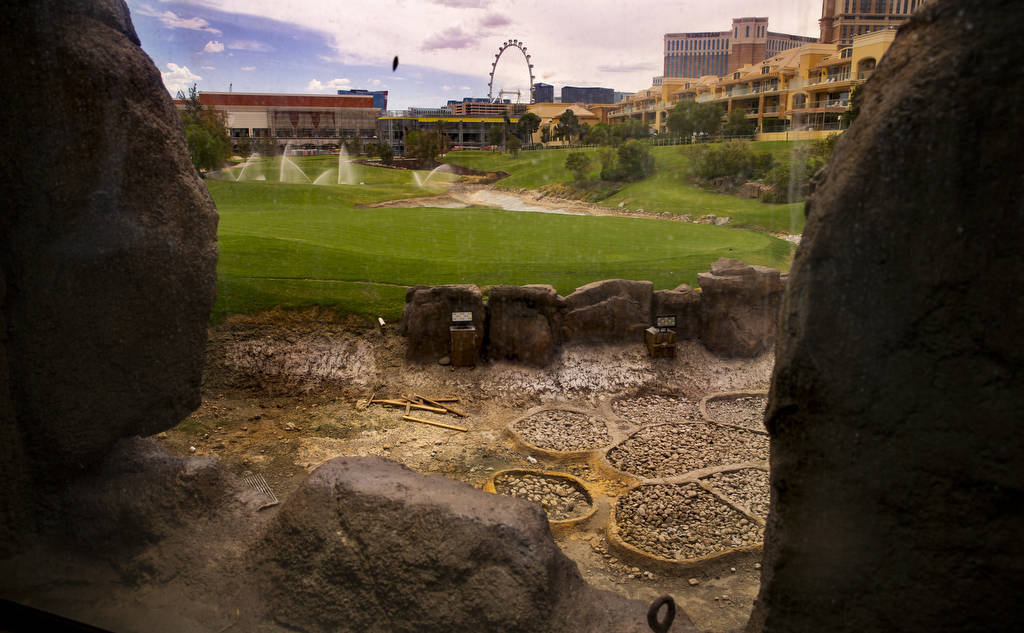 The waterfall and stream features are shown under construction at Wynn Golf Club on Tuesday, Ju ...
