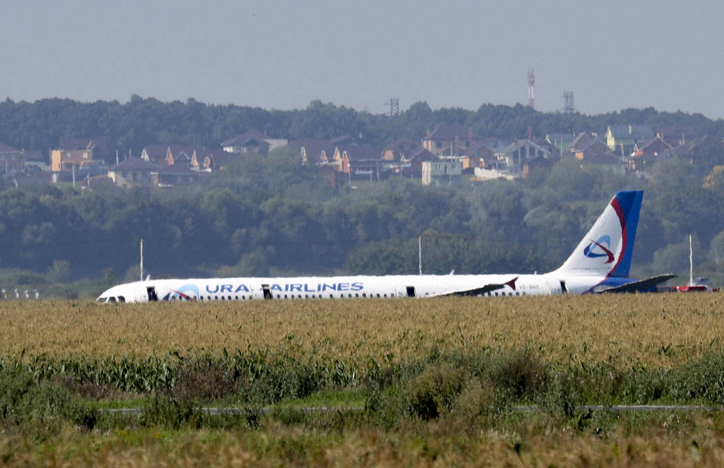 A Russian Ural Airlines' A321 plane is seen after an emergency landing in a cornfield near Rame ...