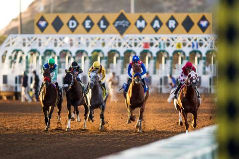 Dortmund with Gary Stevens up wins the Native Diver Stakes at Del Mar Race Track in Del Mar, Ca ...