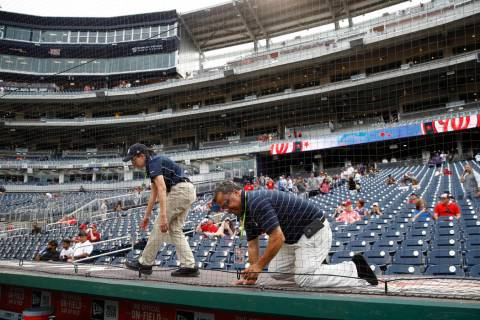 Workers adjust new netting that separates the infield from lower bowl seating before a basebal ...