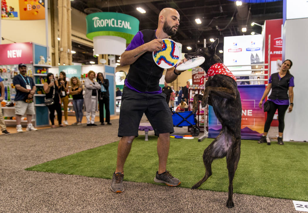 Christopher Padilla performs tricks with dog Poison Ivy during The Canine Experience display at ...