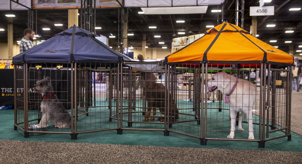 Pet Gazebos are some of the new items at the SuperZoo pet products show in the Mandalay Bay Con ...