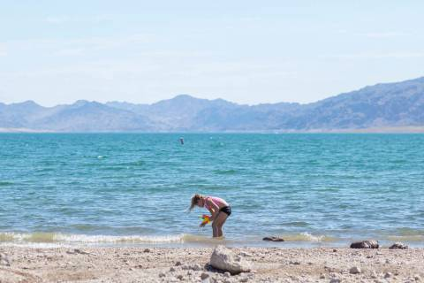 "Girl Scout Gemma ""Zo"" Brown, 7, plays in the water at Boulder Beach at the Lake Mead National R ..."