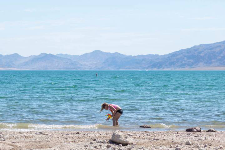 """Girl Scout Gemma """"Zo"""" Brown, 7, plays in the water at Boulder Beach at the Lake Mead National R ..."""