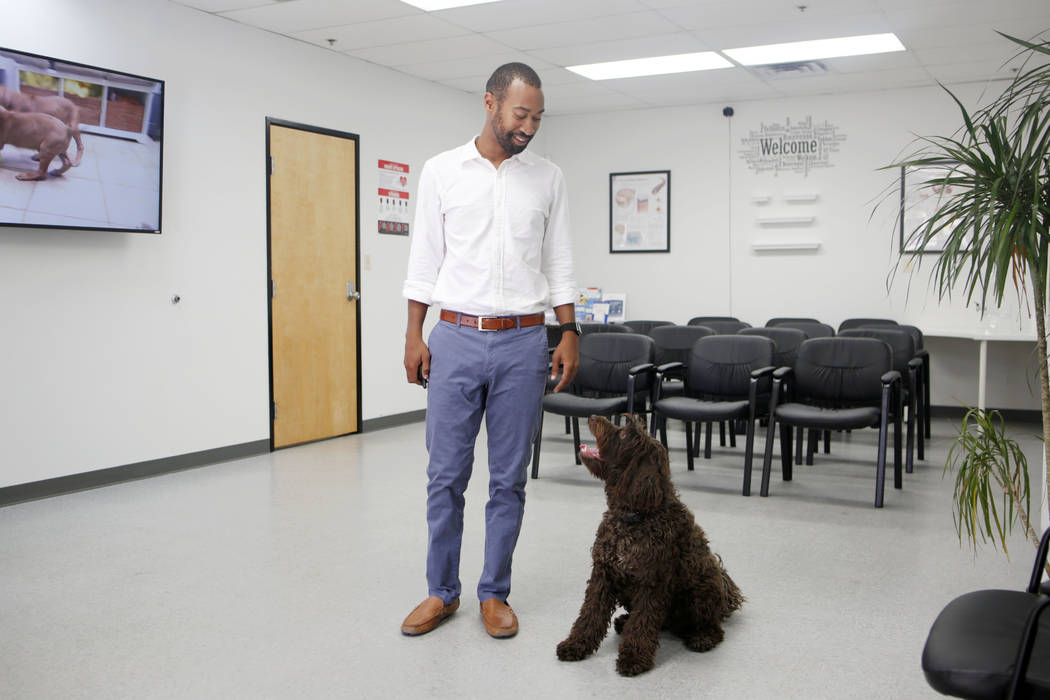 CEO of Silver State Health Ryan Linden with his dog Murphy the Silver State Health clinic lobby ...