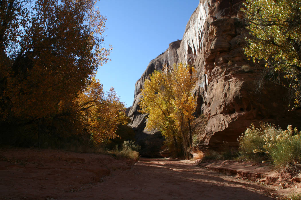 Horseshoe Canyon is located in a remote area of the park. (Deborah Wall/Las Vegas Review-Journal)