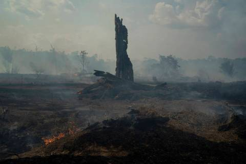 Land smolders during a forest fire in Altamira in Brazil's Amazon, Monday, Aug. 26, 2019. The f ...