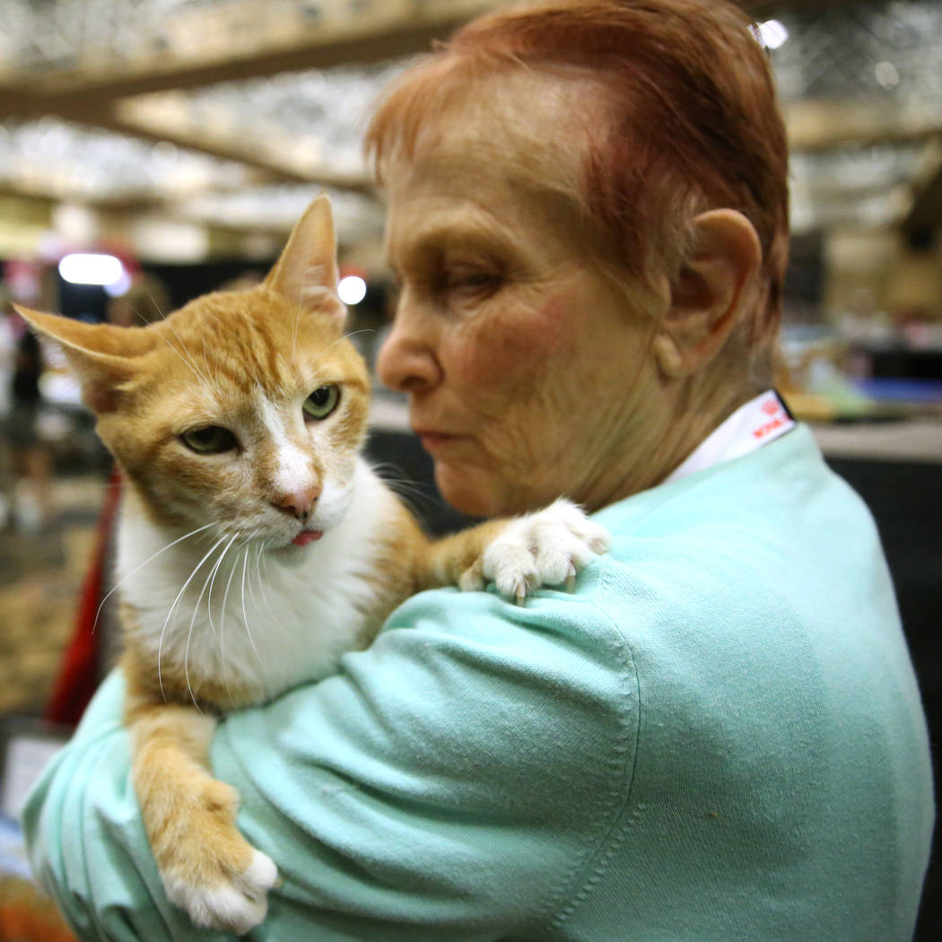 Candy Kalman of San Diego with her cat Duke, a 16-year-old household cat, one of the oldest cat ...
