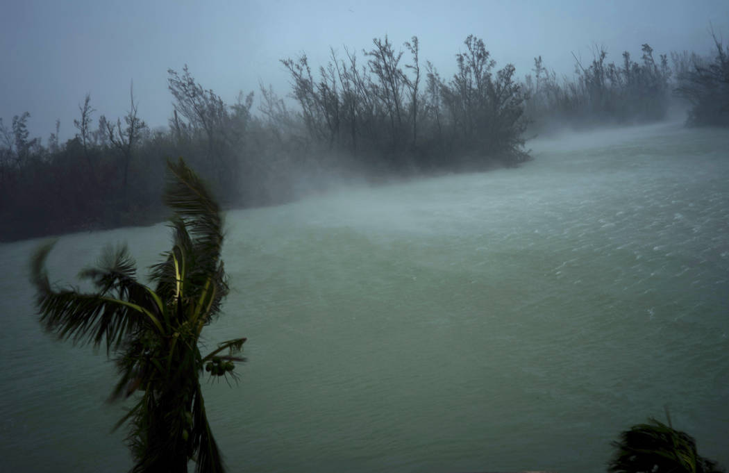 Strong winds from Hurricane Dorian blow the tops of trees and brush while whisking up water fro ...