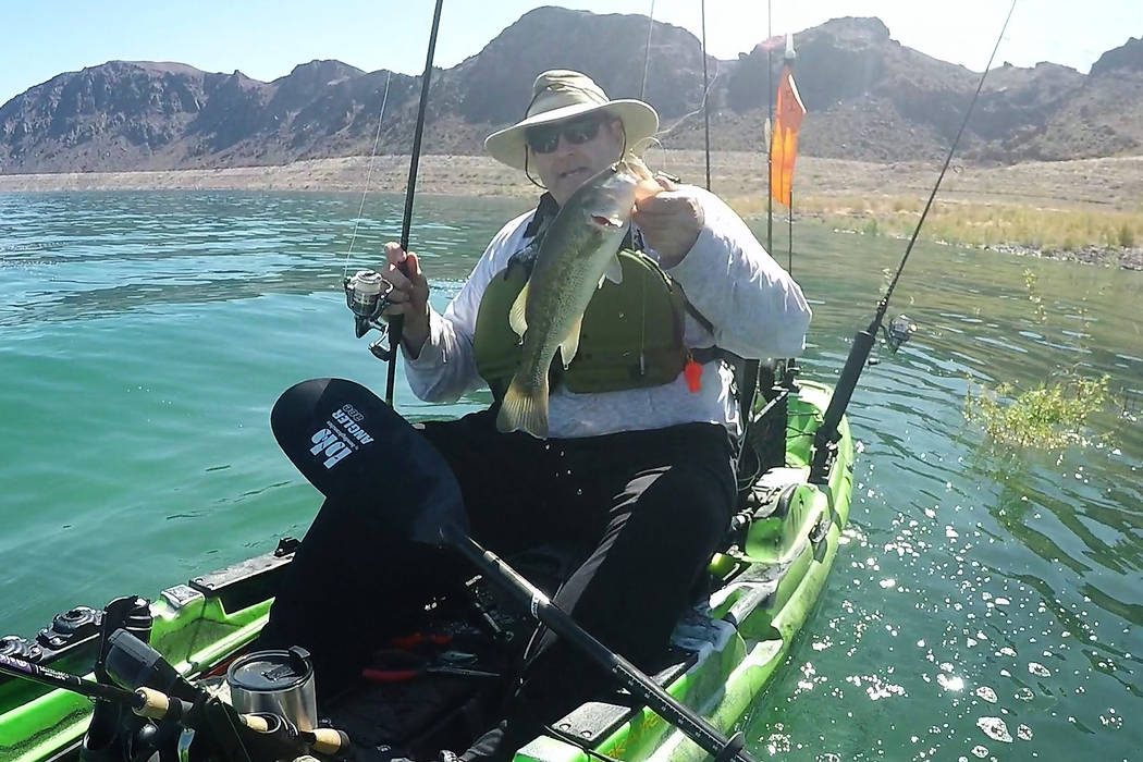 Persistence and a drop shot both paid off when this 2-pound largemouth bass left its hiding pla ...