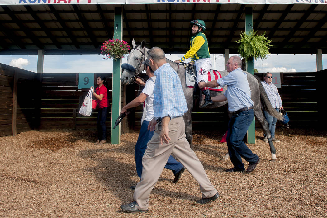 Jockey Joe Bravo and horse Real Story head to the track, Saturday, Aug. 31, 2019, for the $750, ...