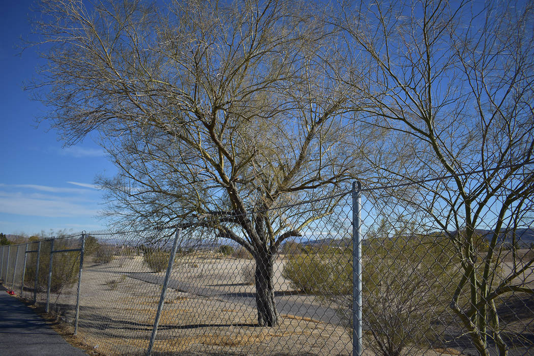 The metal fence that surrounds the perimeter of Black Mountain Golf Course and Country Club bet ...