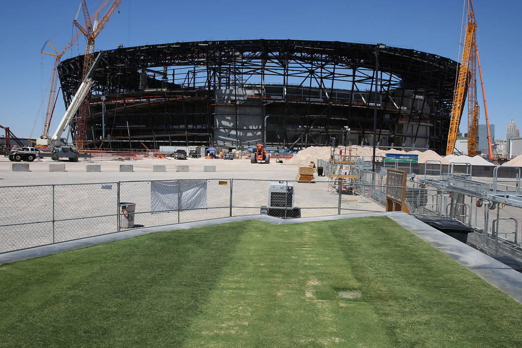 Several types of grasses are seen outside the Raiders Stadium on Friday, Aug. 16, 2019 as the s ...