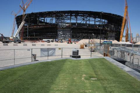 Several types of grass are seen outside the Raiders Stadium on Friday, Aug. 16, 2019 as the sta ...