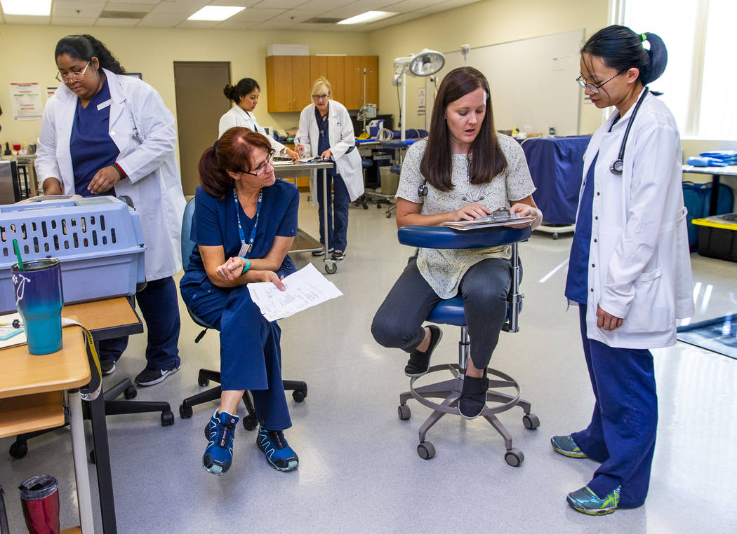 Licensed Veterinary Tech/Professor Aubree Englert, center, confers test results with students N ...