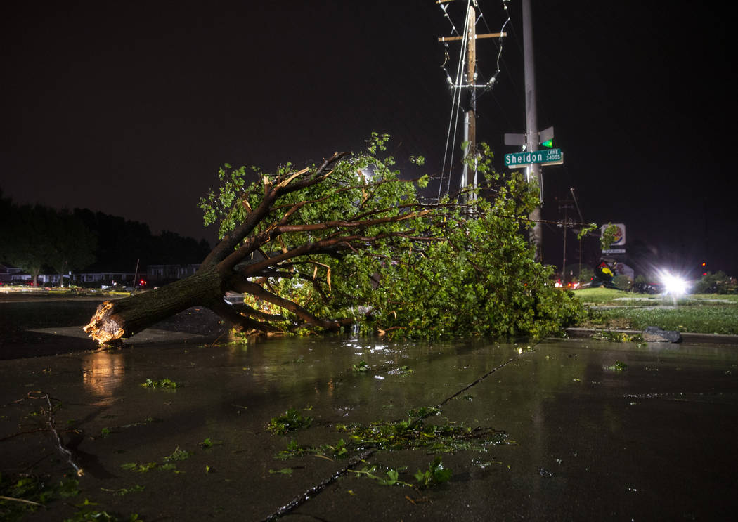 In this Tuesday, Sept. 10, 2019 photo, trees and debris lay on a sidewalk following severe weat ...