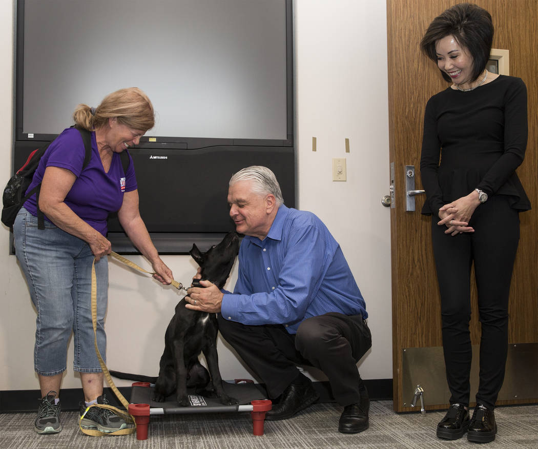 Blaze, a 5-month-old black lab and golden retriever mix, meets with Nevada Gov. Steve Sisolak a ...