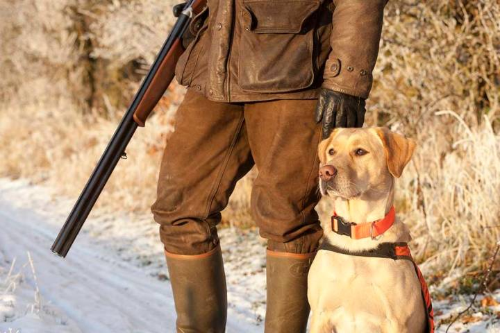 A Utah man who has been in a wheelchair for more than three decades has created a pheasant hunt ...