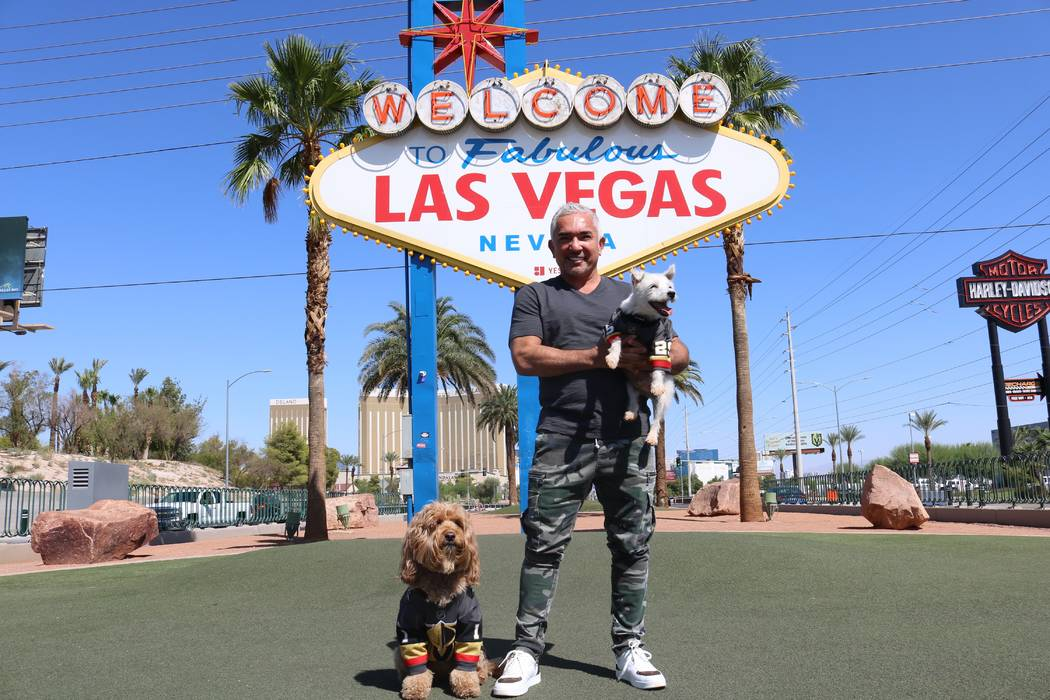 Cesar Millan is shown with Vegas Golden Knight canine icon Bark-Andre Furry and his own Sir Win ...