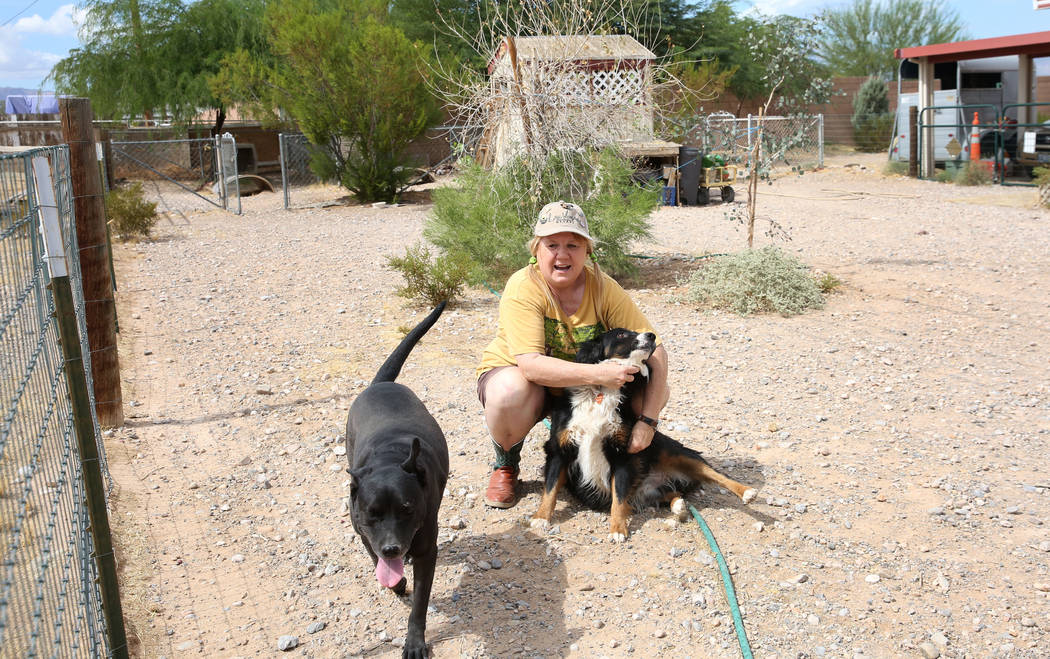Susan Lorenz, 62, plays with her dogs, Ziggy and Sadie Mare at her Las Vegas home on Monday, Se ...
