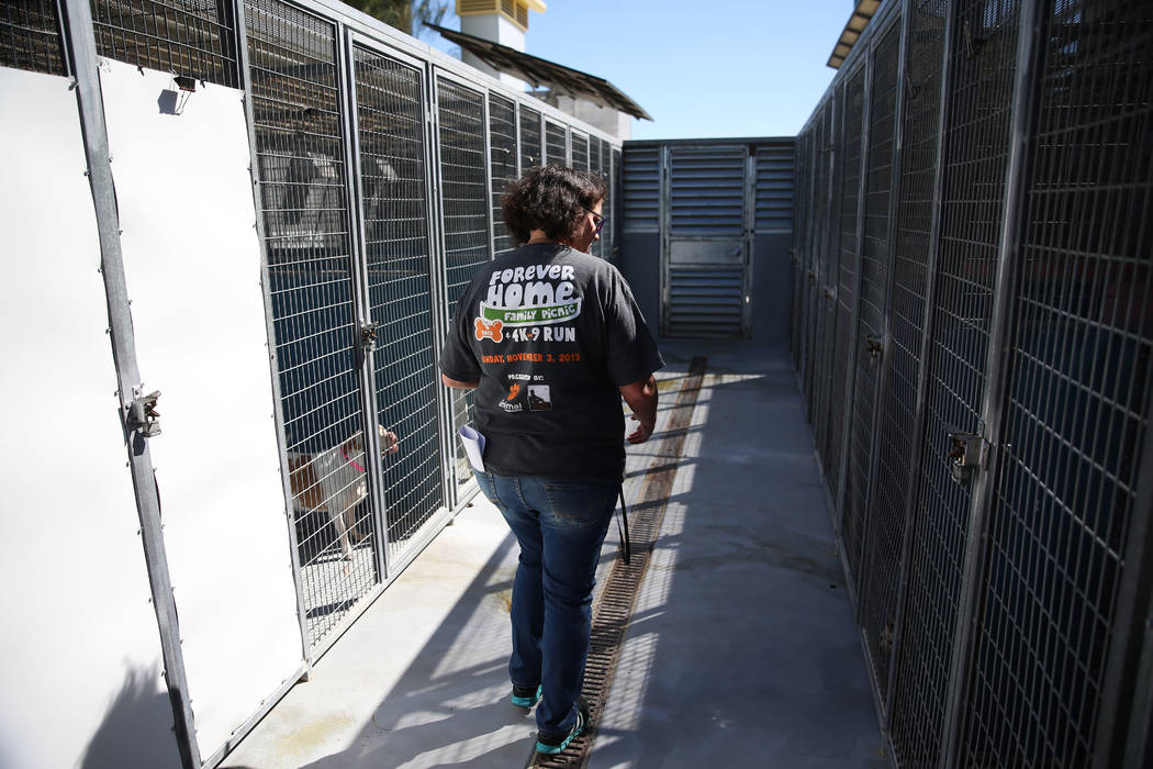Animal care manager Laurel Montgomery gives a tour of at the The Animal Foundation in Las Vegas ...