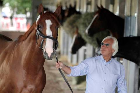 Trainer Bob Baffert walks Justify around the barn after arriving at Belmont Park in Elmont, N.Y ...