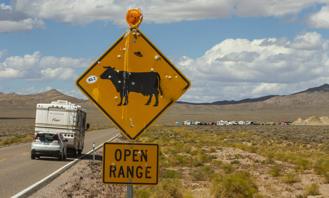 Drivers are encouraged to watch out for cattle on state Route 375 between the Area 51 Basecamp ...