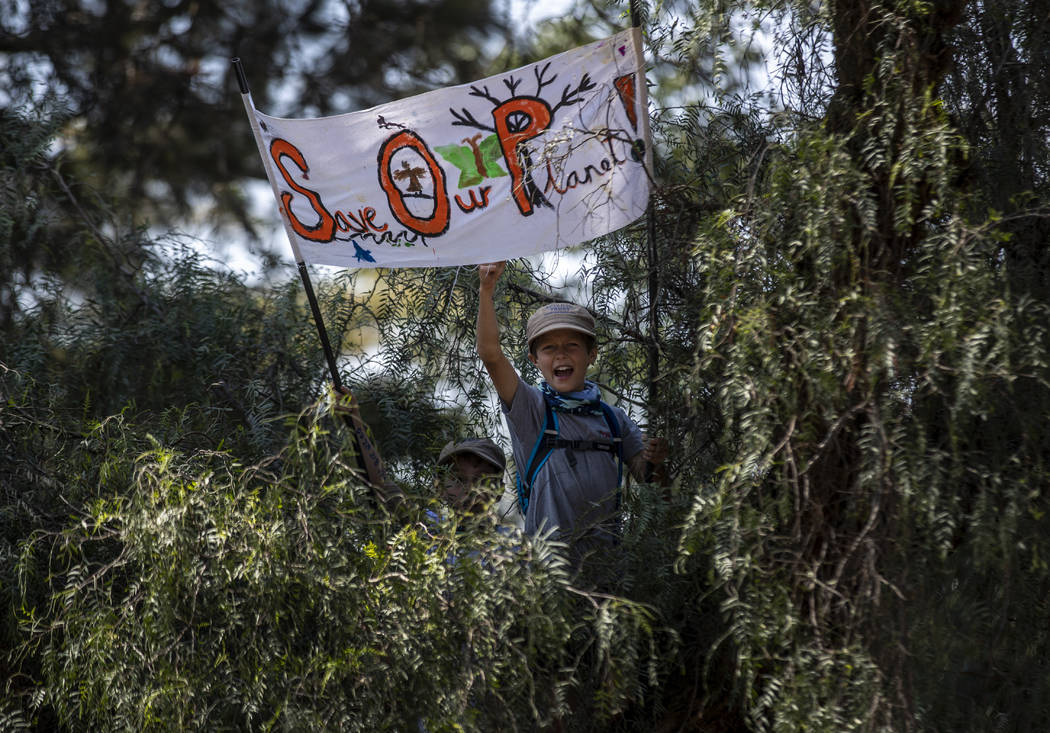 A young boy sits in a tree to get a view joins around a thousand other protesters to demand act ...