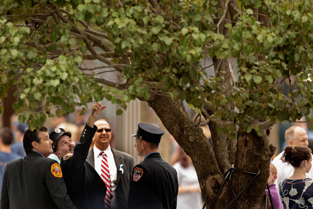 New York City Fire Department fire fighters look at the Survivor Tree at the Sept. 11 memorial ...