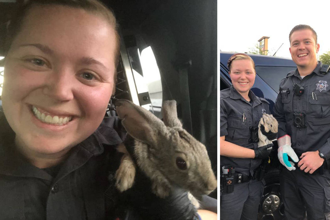 (Nevada Highway Patrol via Twitter)