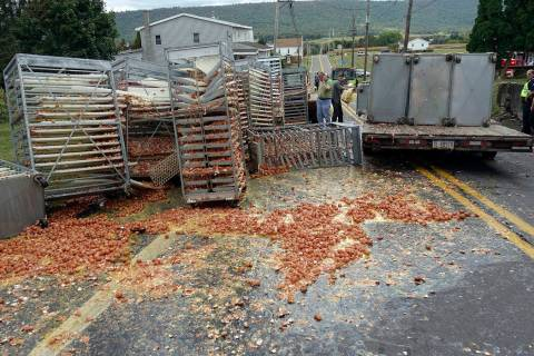 Smashed eggs clutter Route 125 in Hegins Township, Pa., Tuesday morning, Sept. 24, 2019, after ...