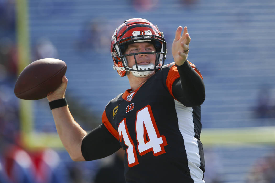 Sharp Bettors Back Bengals Over Vs Steelers On Mnf Las