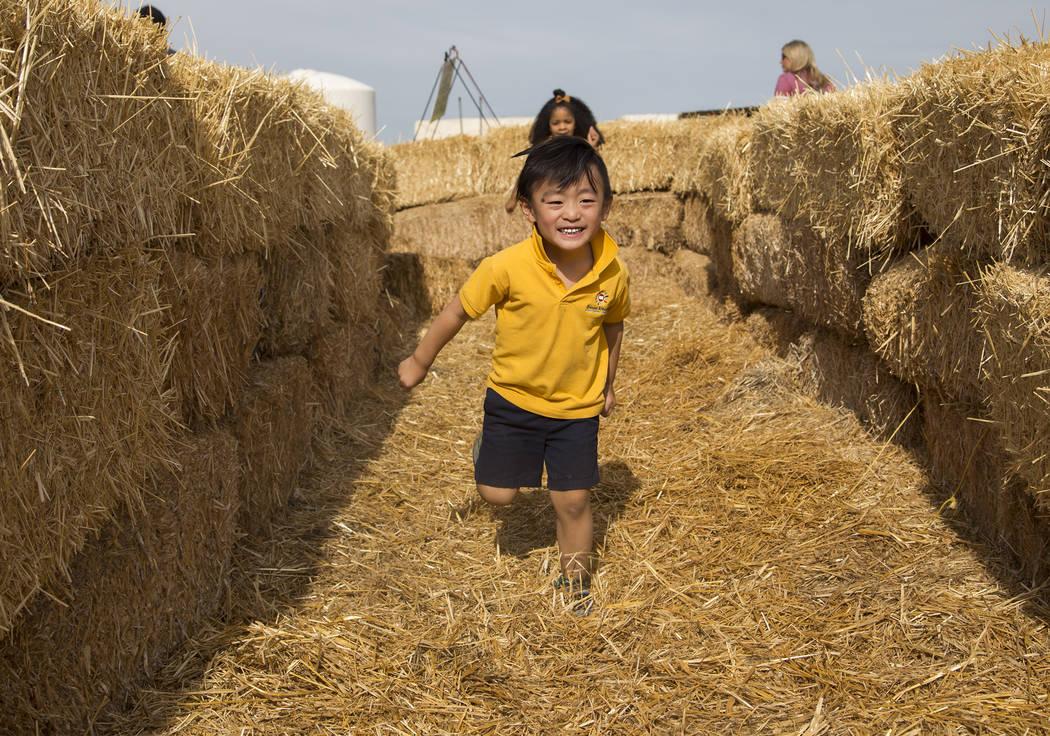 Dominic Teng, 4, runs through the hay maze at Gilcrease Orchard in Las Vegas, Thursday, Sept. 2 ...